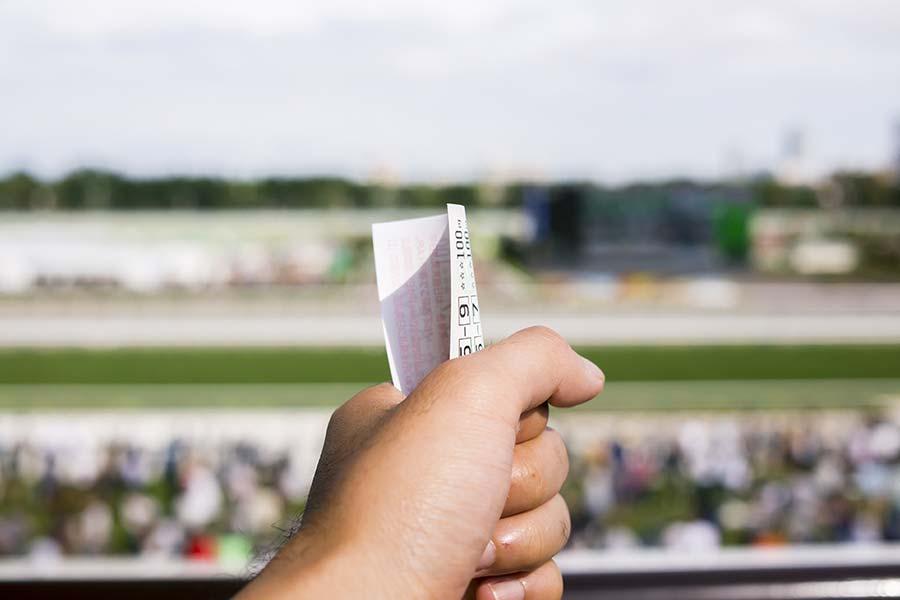 競馬予想ソフトは自分自身の予想と併用するのが賢い活用法
