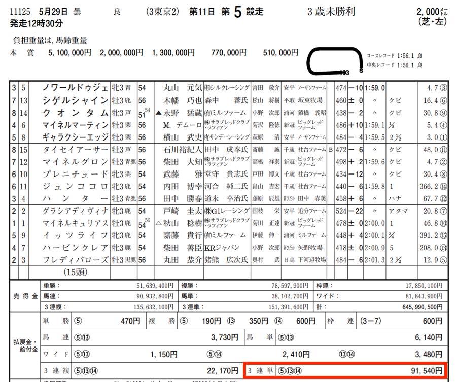 5月29日東京競馬場5レースを検証